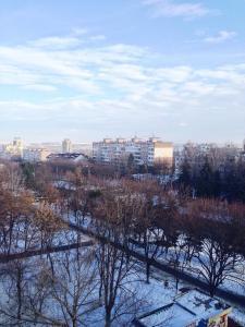 Hostel Romashka