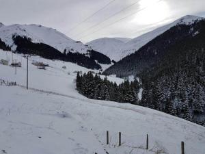 Azra Dağ Evi̇, Horské chaty  Güzelce - big - 24