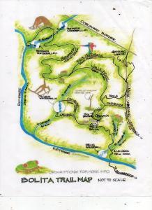 Bolita Rainforest Hostel & Cabinas