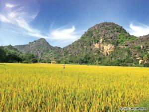 Ninh Binh Ecolodge