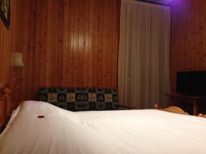 Hotel Vioz, Hotel  Peio Fonti - big - 20