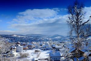 FAVAR Carpathians, Apartments  Skhidnitsa - big - 53