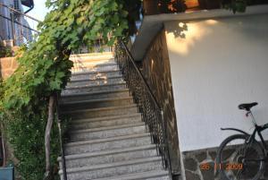 Отель Смоковница - фото 25