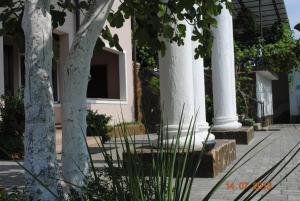Отель Смоковница - фото 24