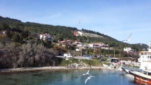 Dardanelles, Priváty  Canakkale - big - 46