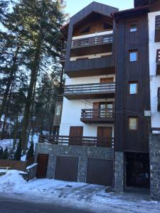 Muller Apartment, Apartmány  Sinaia - big - 6