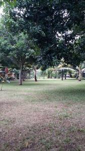 Medori Putih Homestay, Проживание в семье  Улувату - big - 11