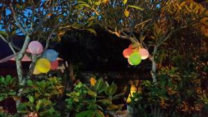 Medori Putih Homestay, Проживание в семье  Улувату - big - 103