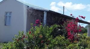 Chez Mimi - , , Mauritius