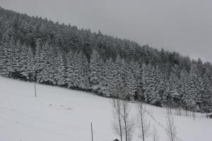 Azra Dağ Evi̇, Horské chaty  Güzelce - big - 34