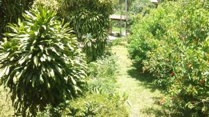 Sítio Santo Antonio, Dovolenkové domy  Areal - big - 25
