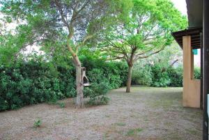 Casa Americo, Apartmány  Campo nell'Elba - big - 6