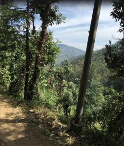 Offthecity Camp Kyar, Luxury tents  Shimla - big - 56