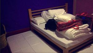 Offthecity Camp Kyar, Luxussátrak  Simlá - big - 4