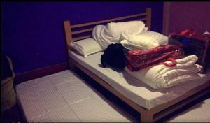 Offthecity Camp Kyar, Luxury tents  Shimla - big - 5