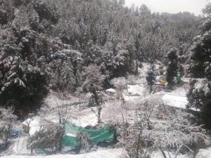Offthecity Camp Kyar, Luxury tents  Shimla - big - 8