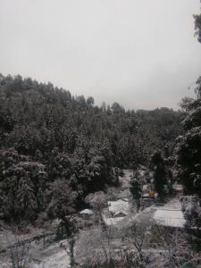 Offthecity Camp Kyar, Luxury tents  Shimla - big - 10