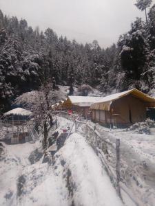 Offthecity Camp Kyar, Zelt-Lodges  Shimla - big - 11