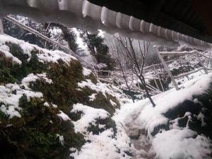 Offthecity Camp Kyar, Luxury tents  Shimla - big - 13