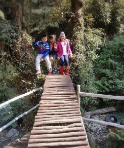 Offthecity Camp Kyar, Luxury tents  Shimla - big - 23