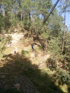 Offthecity Camp Kyar, Luxury tents  Shimla - big - 31