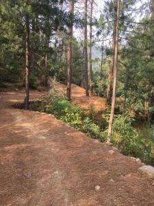 Offthecity Camp Kyar, Luxury tents  Shimla - big - 44