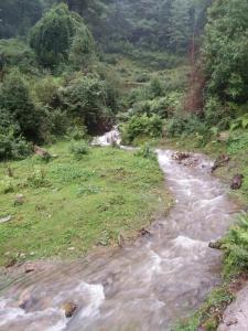 Offthecity Camp Kyar, Luxury tents  Shimla - big - 45