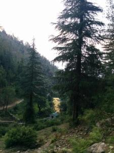 Offthecity Camp Kyar, Luxury tents  Shimla - big - 52