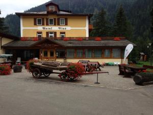 Hotel Vioz, Hotel  Peio Fonti - big - 1
