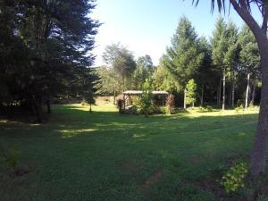 Sol del Paraíso, Case vacanze  Villarrica - big - 14