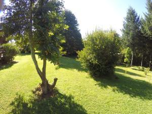 Sol del Paraíso, Case vacanze  Villarrica - big - 13