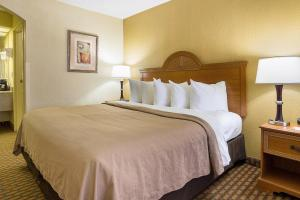 Quality Inn Bossier City, Hotel  Bossier City - big - 3