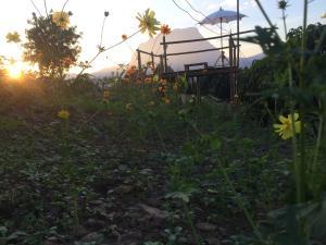 Baan 2 Dao Farmstay, Alloggi in famiglia  Chiang Dao - big - 72