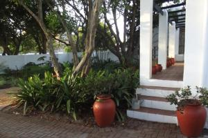 Eastcliff Cottage, Apartmanok  Hermanus - big - 11