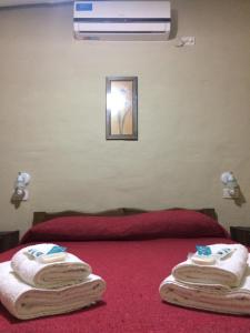 Ayres de Cuyo, Apartments  San Rafael - big - 45