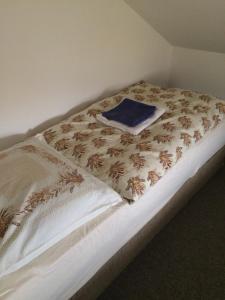 Penzion U Kostela 113