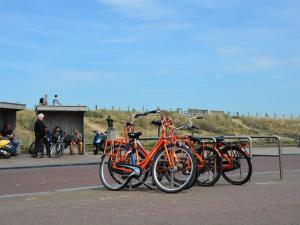 Soleado, Apartments  Noordwijk - big - 18