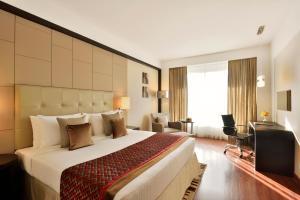 Radisson Blu Pune Hinjawadi, Отели  Пуне - big - 2