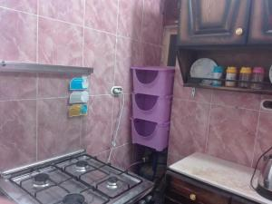 Violet Apartment, Apartmány  Alexandria - big - 17