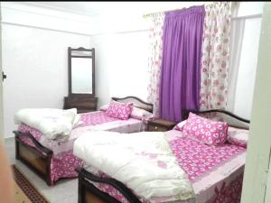 Violet Apartment, Apartmány  Alexandria - big - 26