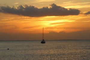 Tierra Mia, Hotels  Holbox Island - big - 53