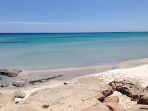 Келибия - Cap Bon Kelibia Beach Hotel & SPA