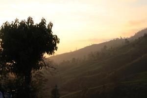 Cool Mount Guest, Homestays  Nuwara Eliya - big - 46