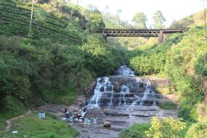 Cool Mount Guest, Homestays  Nuwara Eliya - big - 45