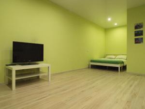 Studio Apartment on Vysokovoltnaya