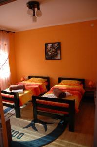 Apartment Knezevic - фото 10