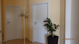 Ferienwohnung Weinau, Апартаменты  Гернсбах - big - 17