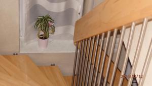 Ferienwohnung Weinau, Апартаменты  Гернсбах - big - 13