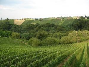 Turistična kmetija Dervarič