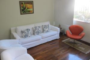Apartment Barão Da Torre